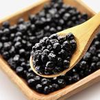 アメリカ産 ワイルドブルーベリー お試し 100g ドライフルーツ ブルーベリー (送料無料)