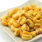 ジャイアントコーン お徳用 ナッツ 500g (塩こしょう味) (送料無料)