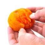 あんぽ柿 完熟 干し柿 1袋 450g ギフト 送料無料