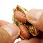 千葉県産ピーナッツ お試し 100g うす皮付き 無塩 ピーナッツ  送料無料