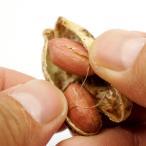 千葉県産ピーナッツ お徳用 500g うす皮付き 無塩 ピーナッツ 送料無料