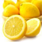 国産 レモン 1kg れもん 送料無料