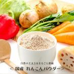 送料無料 れんこんパウダー 国産 無添加 100g レンコンパウダー レンコン 蓮根 粉末 野菜パウダー