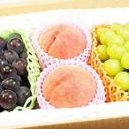 礼盒 - 果物 ギフト シャインマスカット 種無し ピオーネ 完熟 桃 詰め合わせ