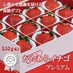 いちご かたわらイチゴ プレミアム:5cm級希少大粒いちごを品格のギフト・贈答用デザインパッケージにて