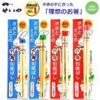 箸 子供 幼児 子供用すべらない竹箸六角知能ばし 箸匠せいわ 日本製箸ポポとミミ 13〜17センチ 4色 あすつく