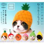 かわいいかわいい ねこフルーツちゃん2 全6種セット (ガチャ ガシャ コンプリート)