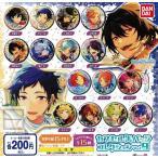 あんさんぶるスターズ!カプセル缶バッジコレクション Vol.9 全15種セット (ガチャ ガシャ コンプリート)