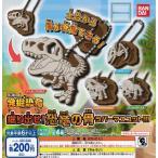 キャラパキ 発掘恐竜チョコ 掘り出せ 恐竜の骨ラバーマスコット 全4種セット (ガチャ ガシャ コンプリート)