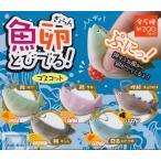 【ガチャガチャコンプリート】魚卵 とびでる!マスコット 全5種セット