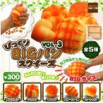 びっくり!BIGパンスクイーズ VOL.3 全5種セット (ガチャ ガシャ コンプリート)