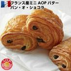 フランス ブリドール社製ミニAOPバター パン オ ショコラ