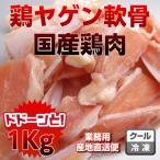 kielbasa-japan_chondroxip590