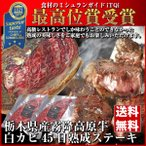 熟成肉 ステーキ 牛肉 ブロック 赤み 霜降り お取り寄せグルメ 送料無料 肉 ギフト 父の日 お中元 詰め合わせ Gift とちぎ霧降高原牛 230g