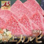 焼肉 盛り 大トロカルビ バーベキュー 黒毛和牛 A5等級 霜降り特上カルビ 300g