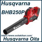ゼノアバッテリーブロワBHB250P/軽量・ハイパワー/本機のみ