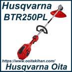 ゼノアバッテリー刈払機BTR250PL/ナイロンカッター&チップソー付き/ループハンドル仕様