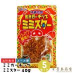 おつまみ 珍味 ミミガー チップ ミミスター 40g 沖縄 お土産 メール便対応 食品