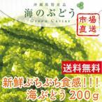 送料無料 沖縄 海ぶどう 200g タレ付 生 栄養 新鮮 おきなわ お土産 定番