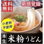 新感覚麺 本生 米粉うどん 6食入セット