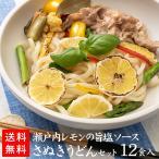 瀬戸内レモンの旨塩ソースセット(12食入)【19B03】