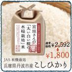 アウトレット 訳あり 食品 米 2kg 兵庫県丹波市産 こ