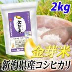 金芽米 無洗米 新潟県産 コシヒカリ 2kg