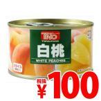 『賞味期限:20.08.12』谷尾食糧工業 TNO 白桃 F2号缶 225g