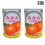『賞味期限:23.12.23』加藤産業 サンゴー みかんブロークン 3号缶 545g×2缶 食品 フルーツ缶詰 フルーツ缶 缶詰