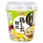 丸美屋 スープdeごはん 鶏しお雑炊 70.3g