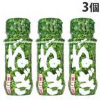 こだま食品 ねぎ 瓶 4g×3個