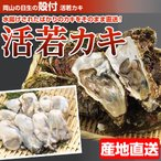 『代引不可』『産地直送』 岡山 日生殻付き 活若牡蠣 加熱調理用 (30〜35個前後)『返品不可』