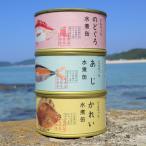どんちっち魚 3缶セット