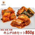 定番 キムチ 3点 発酵食品 お試しセット850g 1〜2人用 韓国直輸入
