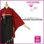 2尺袖 着物 袴 フルセット レンタル 赤×黒×刺繍 Lサイズ 小学生 対応