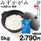 みずかがみ 環境こだわり米 10kg【平成28年・滋賀県産】(玄米か精米かお選びいただけます♪)