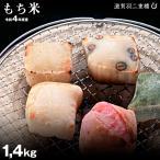 【令和2年:滋賀県産】もち米 滋賀羽二重糯 精米済み白米 1.4kg モチ米