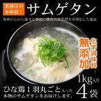 健康食品 韓国宮廷料理 サンゲタン 1kg×4袋 韓国直輸入! プロが選んだレトルト 参鶏湯 サムゲタン 常温・クール冷蔵便可 送料無料