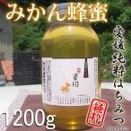 ご予約【31年産】愛媛産 みかん山のみかん蜂蜜1200g(大) 国産純粋蜂蜜