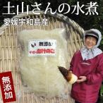 【令和2年産】愛媛宇和島産 千切りたけのこ水煮150g(無漂白・薬品不使用) タケノコ(モウソウダケ)の根本の硬い部分を千切り。