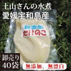 【卸売り40袋@225】 愛媛宇和島産 たけのこ水煮180g×40袋 (無漂白・薬品不使用) 煮炊きに最適。孟宗竹(モウソウダケ/モウソウチク)