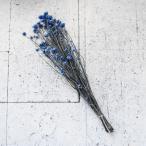 ドライフラワー アンモビューム(ブルー)【アロマワックスサシェ材料 キャンドル材料 ドライフラワーアレンジメント用】