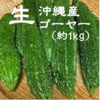 【沖縄産】ゴーヤー 約1kg (サイズ混載2〜4本)