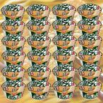 日清のどん兵衛きつねうどん (西)97g  2ケース 24個入 送料無料 日清食品