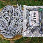 きびなご冷凍-25度(約1kg)&塩干1袋(約200g)セット 甑島産産地直送f 送料無料
