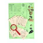化石コレクション10種(解説書付)地質年表と標本のセット  FS008