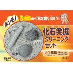 化石発掘クリーニングセット 古生代篇  FC001