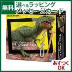 クラフト/工作 4M 発掘&組立シリーズ ARティラノサウルス お誕生日 5歳:男お誕生日 5歳:女