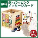 木のおもちゃ 知育玩具エド・インター 森のあそび箱/クリスマスプレゼント 子供