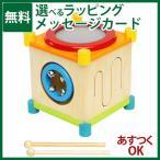 木のおもちゃ  I'm TOY アイムトイ 音楽 メロディーキューブ お誕生日 1歳 楽器玩具/クリスマスプレゼント 子供